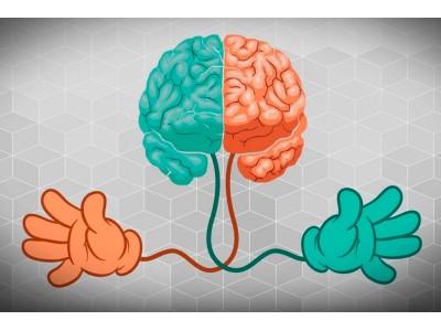 <Зачем развивать оба полушария мозга?