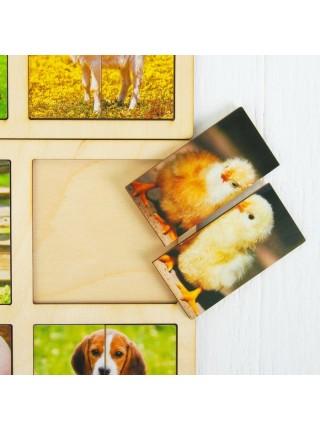 Картинки-половинки Домашние животные (2 планшета) Smile Decor А018