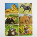 Разрезные картинки Дикие животные, Smile decor Р011